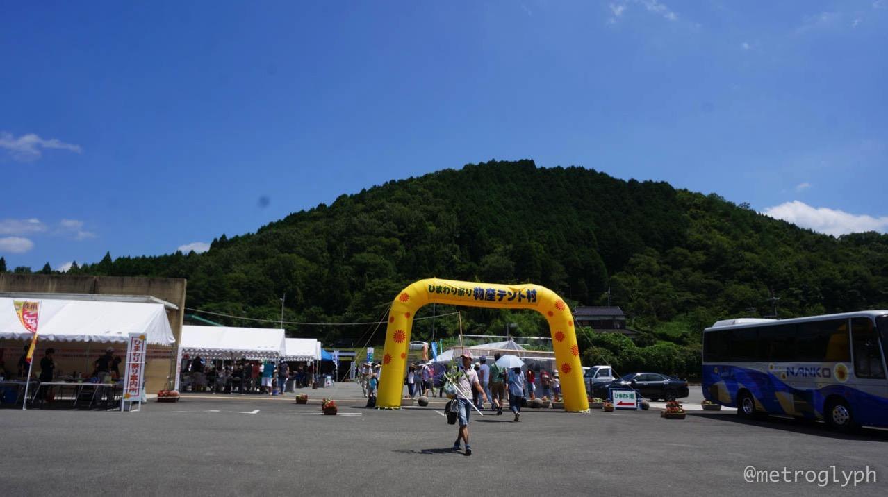 Sayo sunflower festival  3  14